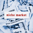 Niche businesses — a case study{{}}