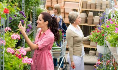 Multiple woman looking at different flowers in garden centre